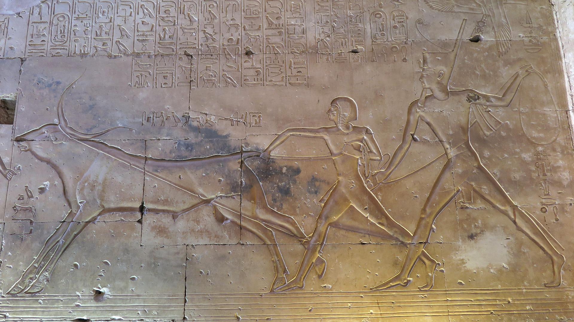 Abydos_amun-her-kepshef